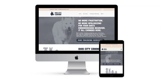 Ohio city Canine - home page on different smart screens