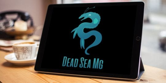 Dead Sea MG logo